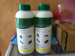 thuoc diet con trung GinGer 10 Sc