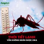 Bán Thuốc Diệt Muỗi Tại Quận Gò Vấp