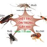 Cửa hàng bán thuốc diệt côn trùng tại TPHCM