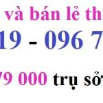 Nơi bán thuốc diệt mối ở TP Đà Nẵng