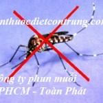 Dịch vụ phun diệt muỗi tại TPHCM