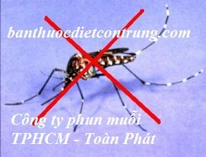 Công ty dịch vụ phun diệt muỗi tại TPHCM