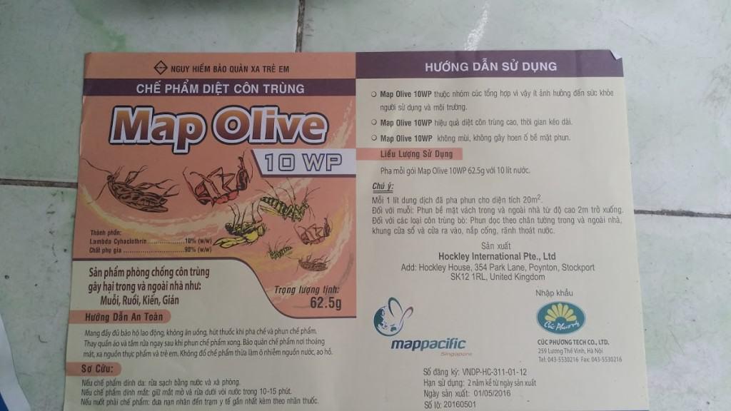 Giay Huong Dan Map Olive 10 WP