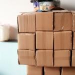 Đại lý bán hộp nhử mối