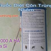 Chi Dan  An Toan Khi Dung Thuoc
