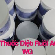 Thung thuoc diet ruoi agita 10 wg