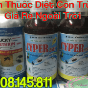 Ban Thuoc Diet Con Trung Gia Re