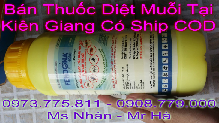 ban thuoc diet moi tai kien long co ship cod