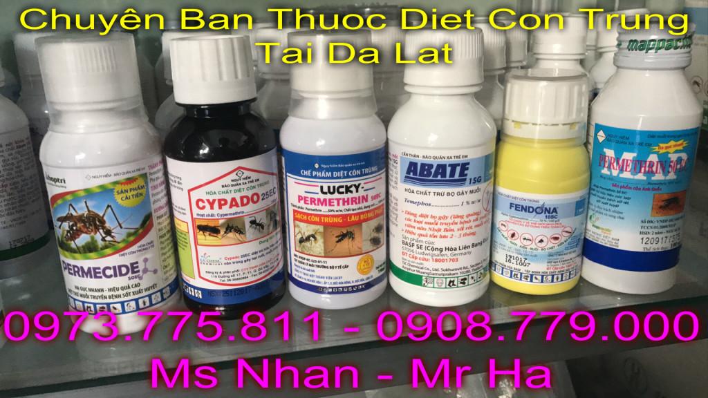 ban thuoc diet con trung tai da lat có ship cod, lien he: 0973.775.811 - 0908.779.000 Ms nhan or Mr Ha